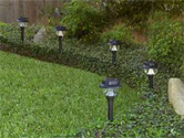 Low voltage landscape lighting marks a small hedge